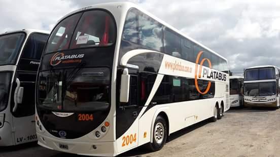 platabus-01